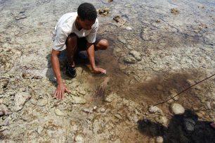 Traditionelles Tintenfischfangen