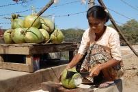 Kokosnuss-Trinken: eins unserer absoluten To Dos für dich!