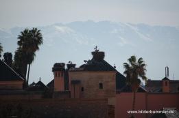 Blick ins Atlasgebirge