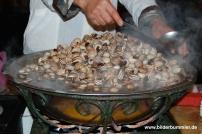 Schnecken checken auf dem Djemaa el Fna