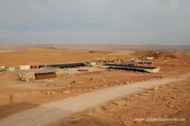 5 Kilometer mitten im Makhtesh liegt diese Beduinenzeltplatz - eine Oase der Ruhe.