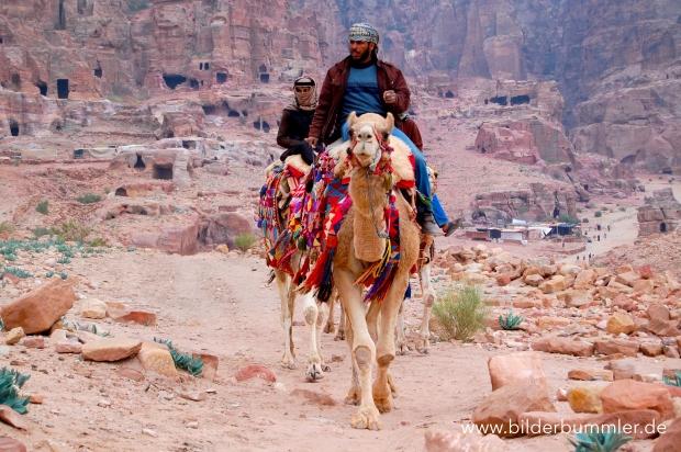 Wenn die Füße schmerzen, kannst bequem auf Kamel oder Esel umsteigen